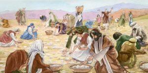 традиции израиль