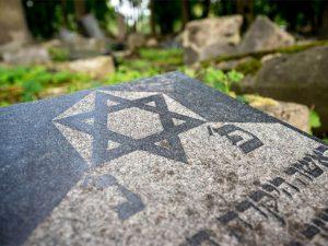 доказать еврейские корни